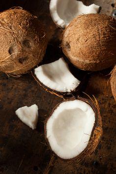 noce di cocco - coconut