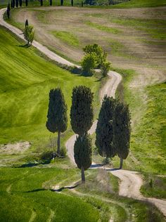 Country road (Tuscany, Italy) by fedelone