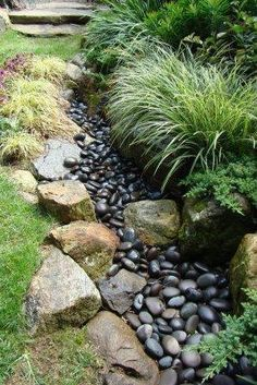 Dry stream - Jan's Uniquely Landscaped Backyard with carex, annuals, Siberian iris, grasses planted along its border