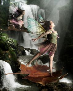 The Leaf Race is the climax of the fairy Autumn Games, contestants must jump down from the top of the great falls and ride their leaf to the bottom with. The Leaf race All Mythical Creatures, Magical Creatures, Fairy Land, Fairy Tales, Fantasy World, Fantasy Art, Fantasy Fairies, Kobold, Fairy Pictures