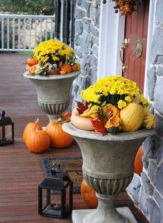 gelbe Chrysanthemen und dekorative Kürbisse in großen Kübeln