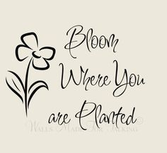26 Best Bloom Where Youre Planted Images Thoughts Wise Words