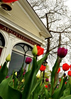 Spring has finally arrived in Niagara-on-the-Lake. Spring Time, Gazebo, Canada, Outdoor Structures, Kiosk, Pavilion, Cabana