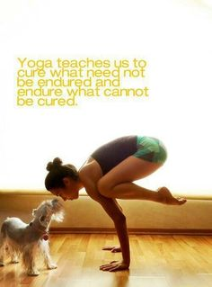 YOGA - It is never enough to have a high-paying job, extremely attractive and stunning appearance, and the trendiest fas...