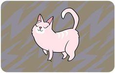 Não sabe o que o seu felino quer dizer com poses e movimentos? Este manual explica!