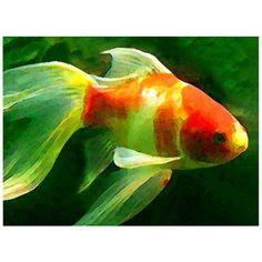 Trademark Fine Art Goldfish Canvas Wall Art by Amy Vangsgard, Size: 18 x 24, Multicolor