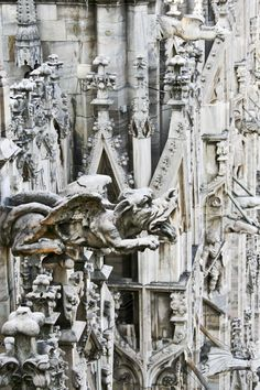 GARGOYLES! MILAN'S CATHEDRAL has an awesome, spired, fairy tale look, but its special treat for families is the ability to walk its rooftops, to be able to see the Italian city of Milan spread out beneath them, and to peer at eye level with roof top gargoyles.  Amazing fun!  See the article's slideshow for a peek at the unforgettable experience of walking the rooftops of Milan's magnificent cathedral.