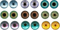 printable irises for dolls eyes - Google Search