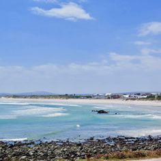 Fossils, West Coast, Tours, Beach, Water, Travel, Animals, Outdoor, Gripe Water