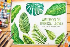 Tropical leaves. Watercolor vector. by AlexGreenArt on @creativemarket