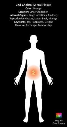 How to Use Chakra Healing to Transform Your Life 2nd Chakra, Sacral Chakra, Chakra Healing, Chakra Root, Chakra Meditation, Guided Meditation, Tantra, Kundalini, Les Chakras