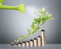 While getting a small business venture together is a demanding and complex task, most experienced business owners will agree that the real challenge is to continuously expand once the operation is already in full speed. (https://springlinc.com/)
