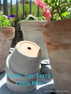 A peek around the garden & aging terra cotta pots | My Uncommon Slice of Surbibia