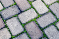 The Gardens of Petersonville: Permeable Pavers