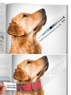 """This is an interactive PSA poster and it looks to be in a magazine article. The hook is """"10,000 are euthanized every day"""". This PSA is particularly eerie because the needle is pointed right at the dogs throat. The call to action is """"Adopt today"""" . This PSA is sponsored by the ASPCA. The target audience ranges from younger adults to elderly adults."""