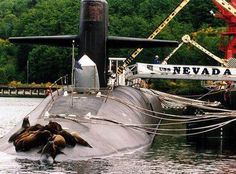 "THE ORIGINAL SEAL TEAM by the Navy Fund: ""The ballistic missile submarine USS Nevada was attacked by a rogue seal team while docked at Bangor, Washington. According to Navy officials, this was not a planned training exercise.   ""The perpetrators made their escape back into the water, leaving from the ship's bow. None could be identified, as they were in their SEAL-issued wet suits and underwater gear."""