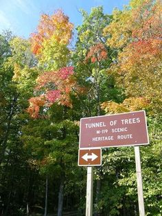 Touring Michigan's Tunnel of Trees