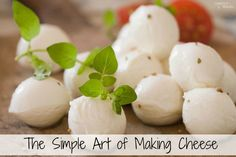 The Simple Art of Making Cheese. The cheese making process is easier than you'd think and SO much fun! via @comfortdomestic