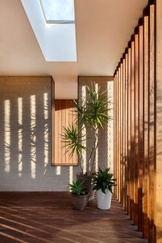 This timber and glass pavilion by InForm is a beautiful low slung sprawling flat roofed home that any person who likes clean modern design would love. Interior Architecture, Interior And Exterior, White Mosaic Tiles, Glass Pavilion, Timber Screens, Coastal Living Rooms, Screen Design, Wood Glass, House 2