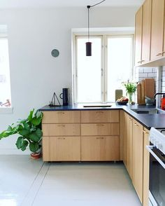 Elegant Premade Kitchen Cabinets From Ikea