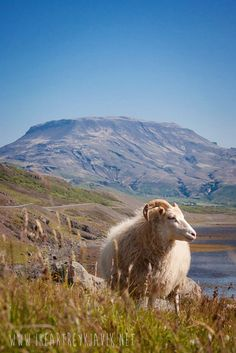When is the best time to visit Iceland? #iceland #inspiration #traveltips
