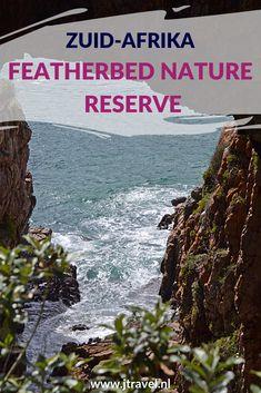 Aan de overkant van de lagune van Knysna ligt het Featherbed Nature Reserve waar je per boot naar toe wordt gebracht, met een aanhanger naar boven wordt gereden en lopend weer bij de boot aankomt. Een schitterend natuurgebied voor een mooie wandeling. Loop en lees je mee? #featherbednaturereserve #featherbed #knysna #zuidafrika #wandelen #jtravel #jtravelblog