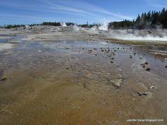 Norris Geyser Basin. Yellowstone National Park, WY (Гейзерный бассейн Норрис. Йеллоустоун, Вайоминг)