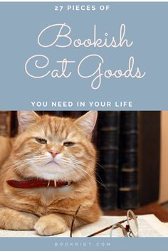 27 awesome bookish gifts for the cat lover in your life (....including yourself)
