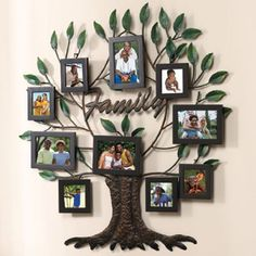 "Family Tree Frames For Wall my very own ""family tree"" painted on the wall….just have to hang"