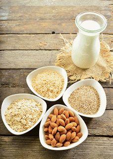 Agenda della Casalinga: Tipi di latti vegetali bio