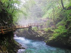 Passerelle de bois, Slovenie