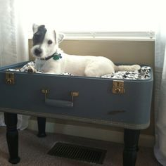 Pinterest inspired vintage suitcase dogbed... This was a fun one and he loves his bed!
