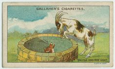 The fox and the goat. From New York Public Library Digital Collections.