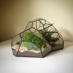 The terrarium has evolved from its notable beginnings in botanical science to become a staple of modern interior design. It's a craft primarily fixed within basic geometric guidelines, and I find an incredible freedom stepping away from those rooted expectations and into a world of irregularity. I often find sculptural inspiration in natural forms and believe the container can be just as much a point of focus as the environment itself.