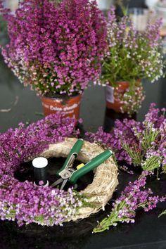home of voxgirl: krans med ljung - Lilly is Love Diy Fall Wreath, Xmas Wreaths, Door Wreaths, Diy Flowers, Flower Decorations, Fleurs Diy, Deco Floral, Funeral Flowers, Wreath Tutorial