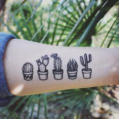 Potted Cactus Temporary Tattoos Succulent House Plants Black