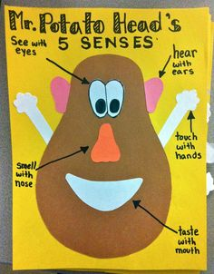 5 Senses with Mr. Potato Head!