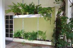 rain-gutter planters and chain for vertical garden