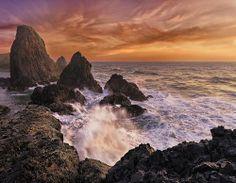 Seal Rock (by Arwinder Nagi)