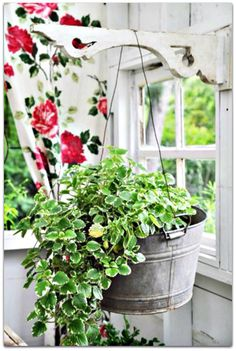 Hanging flowers in a galvi tub.... be still my heart!