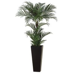 6' Areca Silk Palm Tree w/Tall Container - LZP677-GR
