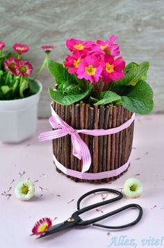 Great idea for hiding ugly plant pots. Love it!