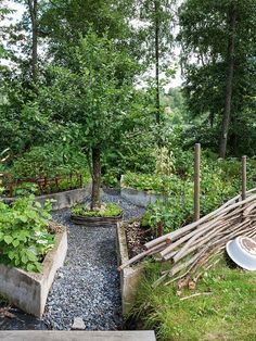 like the raised container gardens surround the central tree. via Made In Persbo