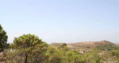 Se encuentra localizada en una urbanización de chalets rodeados de la naturaleza, oportunidad de Inversión, 110,000 €, 1, RF117777