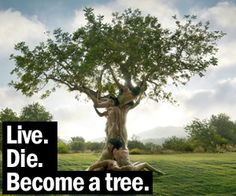 Treeincarnation:+From+Ashes+to+Spiritree+|+DudeIWantThat.com