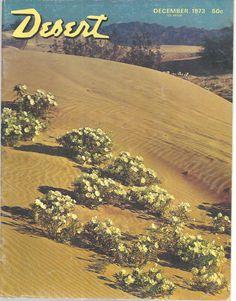Primrose Blooms Yuma Desert Magazine December 1973 Palm Desert California   #doesnotapply