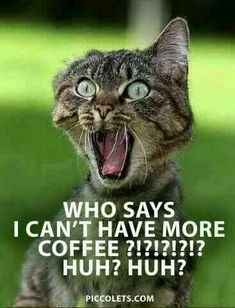 Café #CoffeeHumor