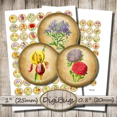 Garden Flowers Digital Collage Sheet 1 inch inch by DigiBugs Collage Sheet, Digital Collage, Collages, Decorative Plates, Images, Plant, Unique Jewelry, Handmade Gifts, Garden
