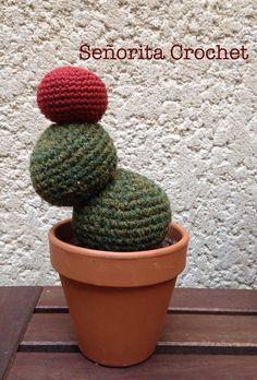 Cactus de Señorita Crochet