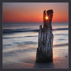 Sun at the perfect place to shine through the top of the driftwood.